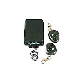 Kit de Receptor con 2 Controles Remoto
